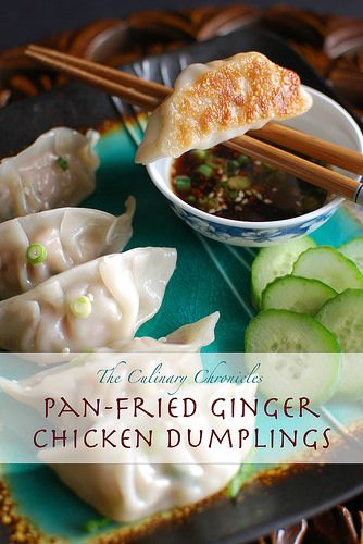 Pan-Fried Ginger Chicken Dumplings by The Culinary Chronicles, via Flickr
