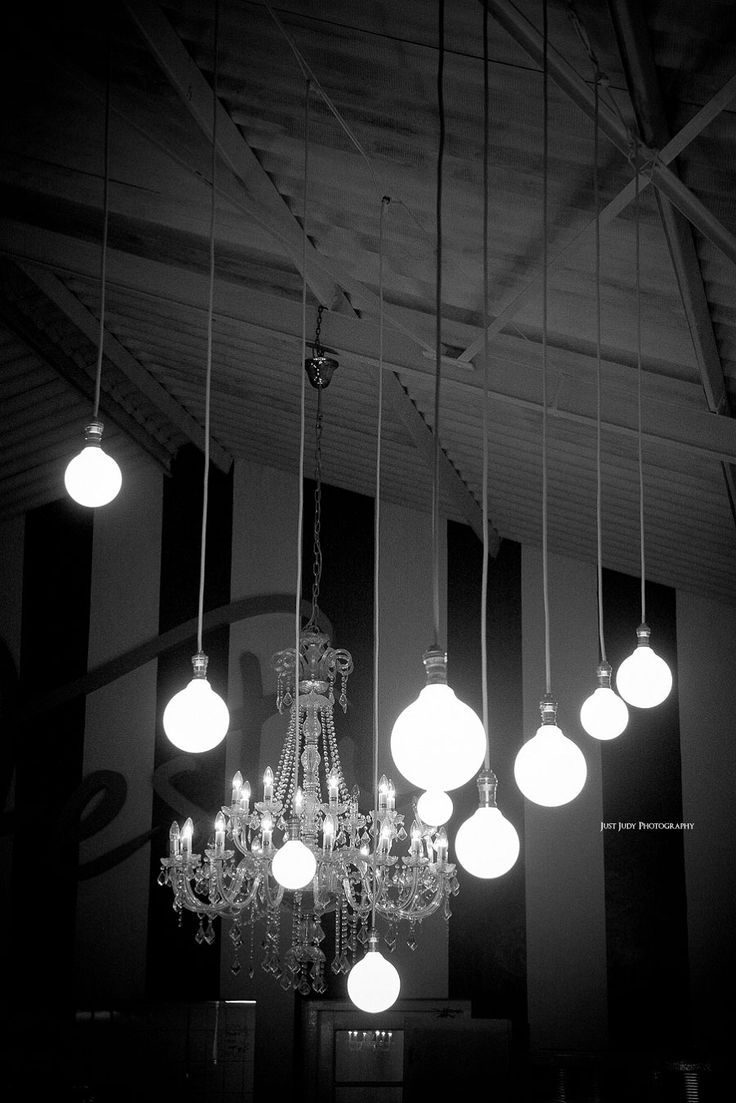 Bulbs | Just Judy Photography
