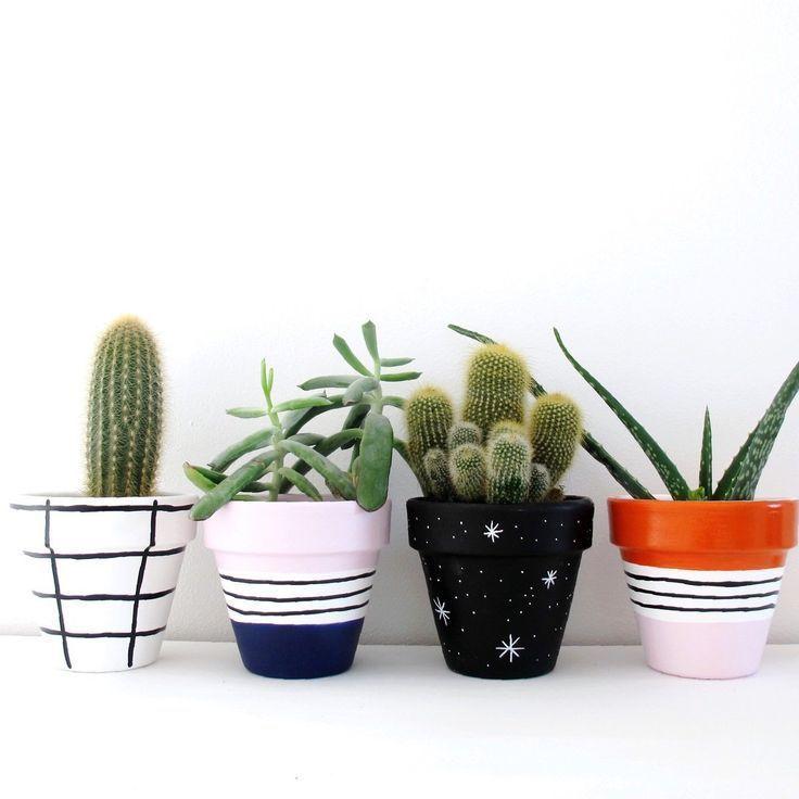 Cute Little Pots Cactusflowerpot Painted Plant Pots Painted Flower Pots Succulent Pots