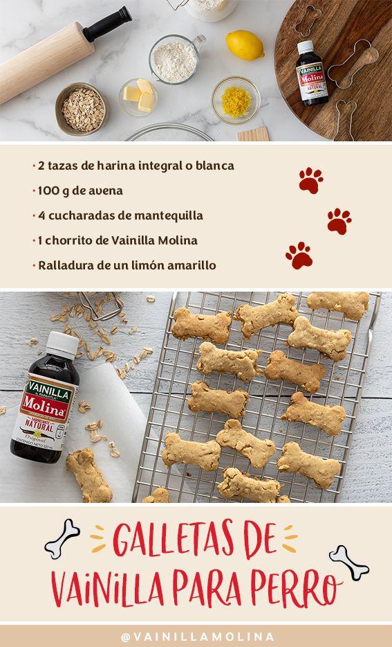 Consiente a tu cachorro este y todos los días con estas deliciosas galletas. ¡Le encantarán a tu mascota! Dog Snacks, Dog Treats, Dog Cookies, Homemade Dog, Dog Care, Pet Shop, Animals And Pets, Pet Dogs, Dog Food Recipes