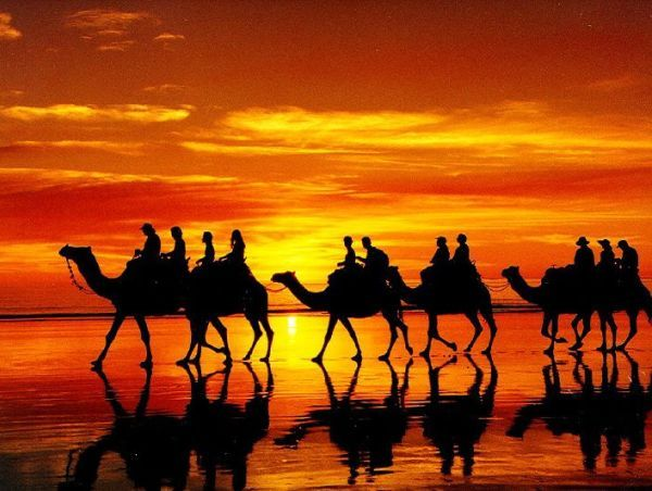 I had a very vivid dream about riding camels last night, ok subliminal mind I'm always up for a new adventure!