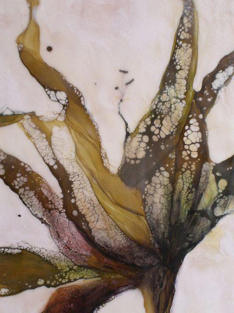 botanical detail by Alicia Tormey  http://www.aliciatormey.blogspot.com/ http://www.flickr.com/photos/aliciatormey/sets/72157628089571147/