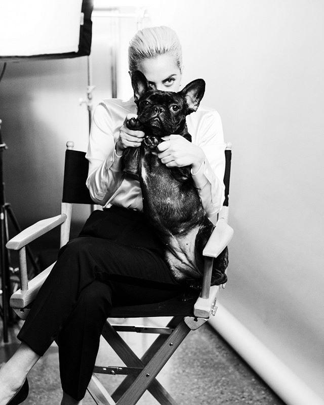 #LadyGaga é o novo rosto da @tiffanyandco apresentando a nova linha de joias 'Tiffany HardWear'. A campanha vai estrear neste domingo no Super Bowl que terá a cantora como atração do show de intervalo! #LOFFama  via L'OFFICIEL BRASIL MAGAZINE INSTAGRAM - Fashion Campaigns  Haute Couture  Advertising  Editorial Photography  Magazine Cover Designs  Supermodels  Runway Models