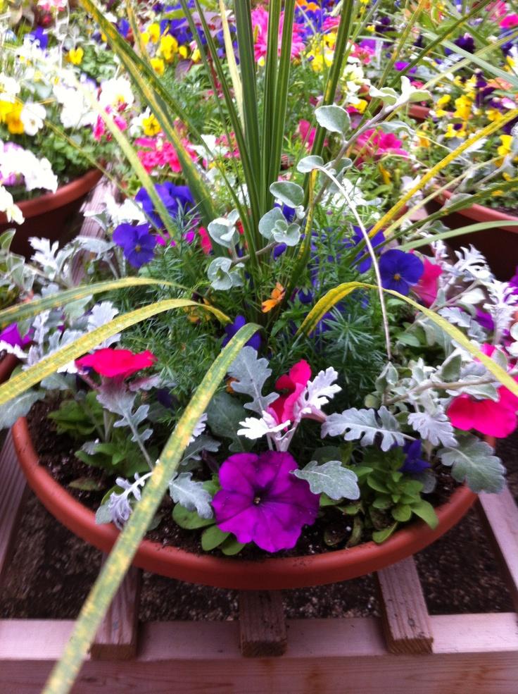 40 best flower pot arrangements images on pinterest for Garden arrangement ideas