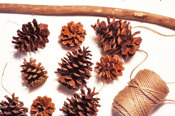 Prim and Propah: Amy from Creative Soul Spectrum Shows Us How to Make DIY Pinecone Mobile, a Guest Post