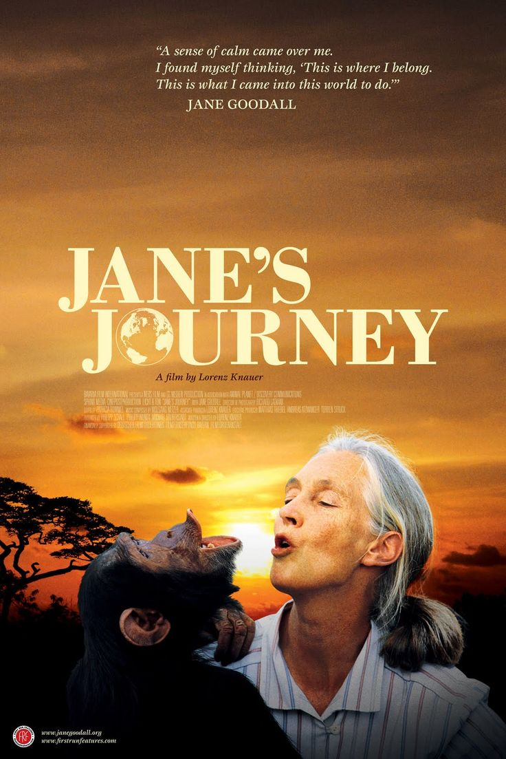 Trustmovies lorenz knauer s jane s journey concen trates on