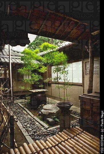 Kyoto, Myoshinji, pequeño jardín tsuboniwa bambú