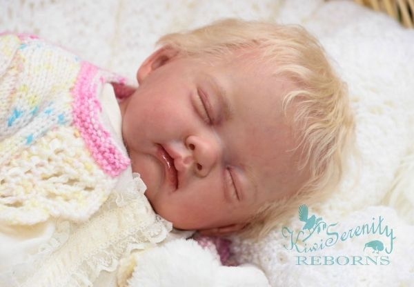 First finished baby of 2017 Sofia brought to life by BABY BANTER member Judy from Kiwiserenity Reborns
