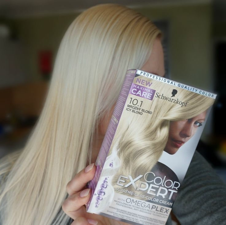 Schwarzkopf Color Expert Omegaplex hair dye 10.1 Icy Blond review and after photos. via @beautybymissl