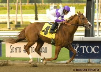 220 best Horse Racing images on Pinterest | Horse racing, Race ...