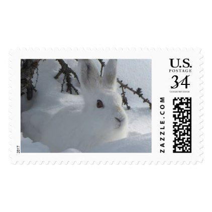 WHITE HARE IN SNOW POSTAGE FOR POSTCARDS - christmas stamps custom merry xmas postage diy customize