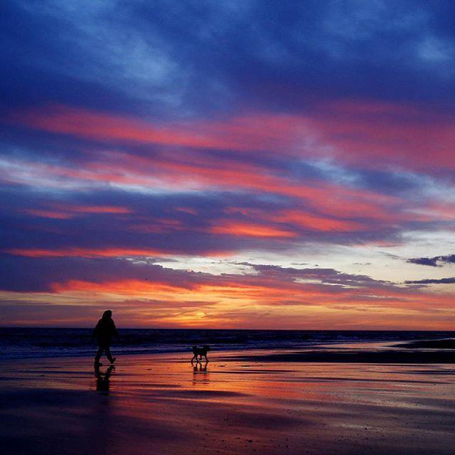 Le luci della sera sulla #spiaggia di Whitley Bay, Inghilterra #beach #lights #nature #life  #dog #sunset #bestpictures  Guarda su ANSA.IT le grandi foto dal mondo