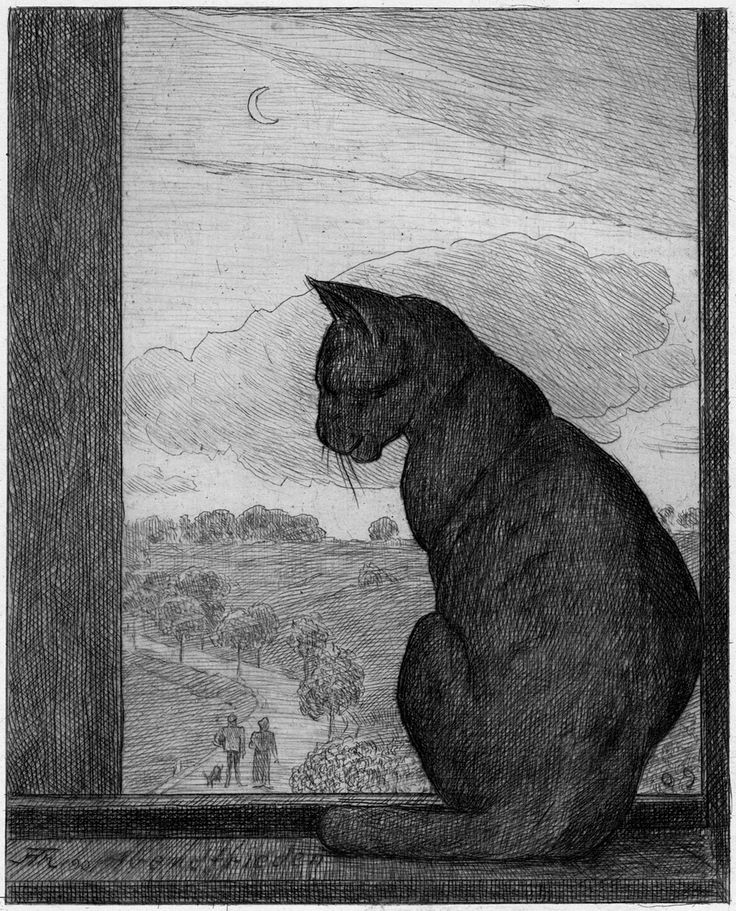 red-lipstick:  Hans Thoma (German, 1839-1924), The Cat, 1901. Etching.
