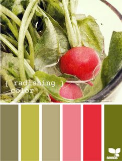 .other possible kitchen colors to go with all my red.