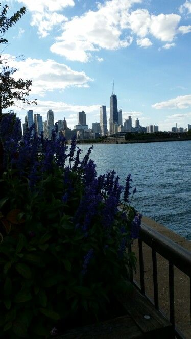 A bit of city skyline from wharf at Navy Pier