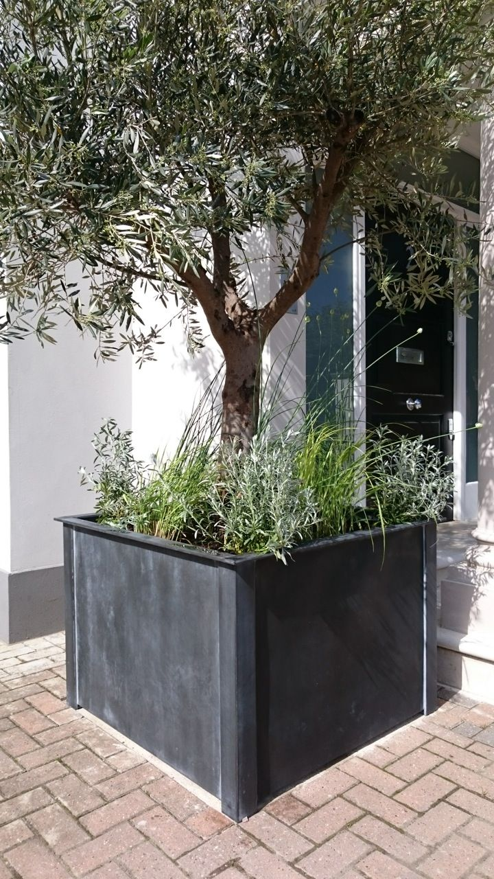 best square metal planters  troughs images on pinterest  - square leadlook zincgalvanised steel planter from garden requisites longlasting and