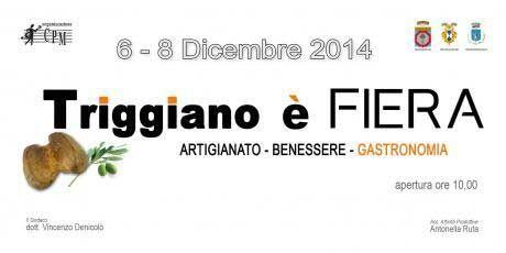 Triggiano è Fiera, la fiera - sagra organizzata dall'associazione Centro Prospettiva Musica dal 06 al 08 dicembre 2014 in P.zza V. Veneto a Triggiano (Ba)