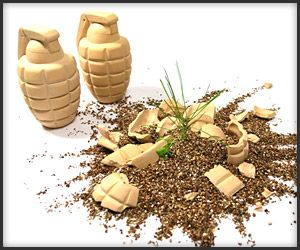 Turn desolate urban lots into a field of flowers and grass with these biodegradable clay grenades. Just toss a few over the fence into empty yards and flowers start to pop up in about 3 weeks.