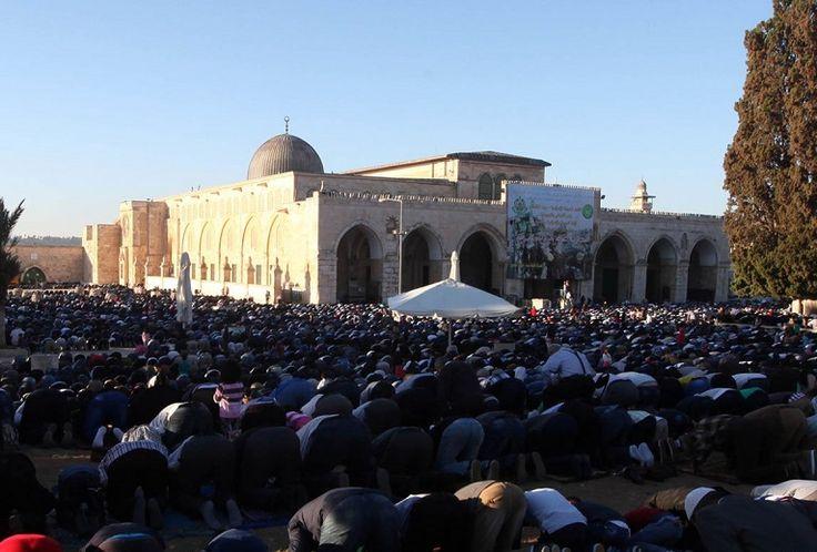 #Израиль пытается навязать новый #статус-кво мечети аль-#Акса  В заявлении, опубликованном «Исламским движением», говорится, что поощряя «бандитское поведение» поселенцев, Израиль «терроризирует» палестинских верующих ради достижения своих политических целей