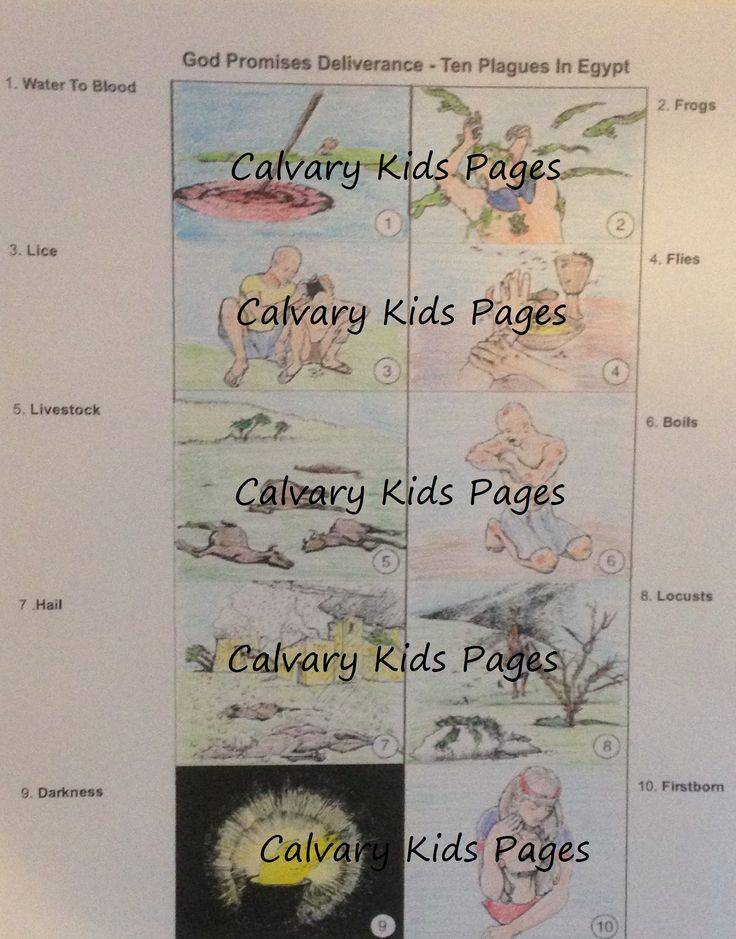 11 Best Calvary Kids Coloring Pages Images On Pinterest