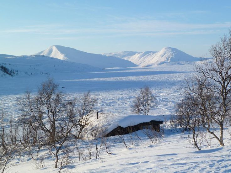 Namsskogan, Norway. www.inatur.no/hytte/50f2fcbde4b0adea30743b57/storgasvassbua-nr-3-i-namsskogan-fjellstyre   Inatur.no