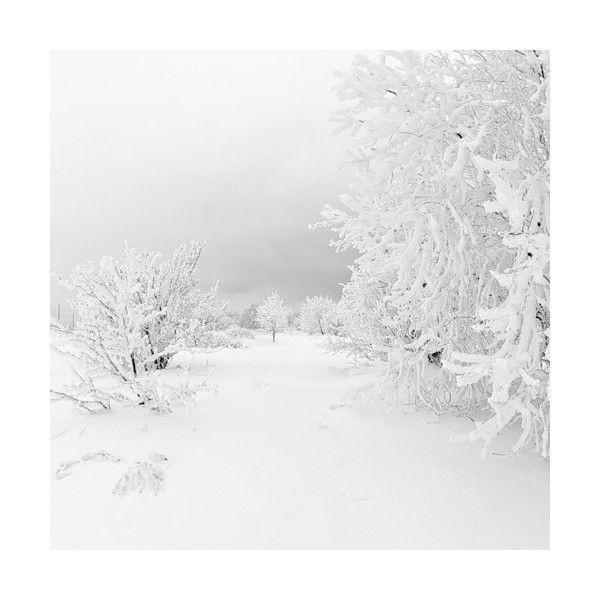 Леди дождя — «рождественское утро (97)» на Яндекс.Фотках ❤ liked on Polyvore