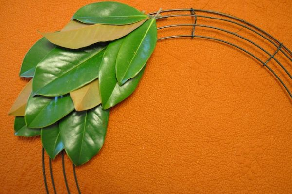 Magnolia Leaf Wreath4: