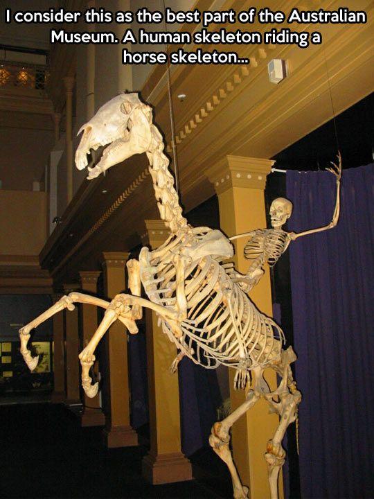 Australian Museum...