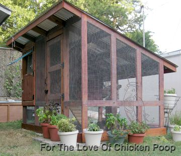 For The Love Of Chicken Poop: Planning And Building The Chicken Coop