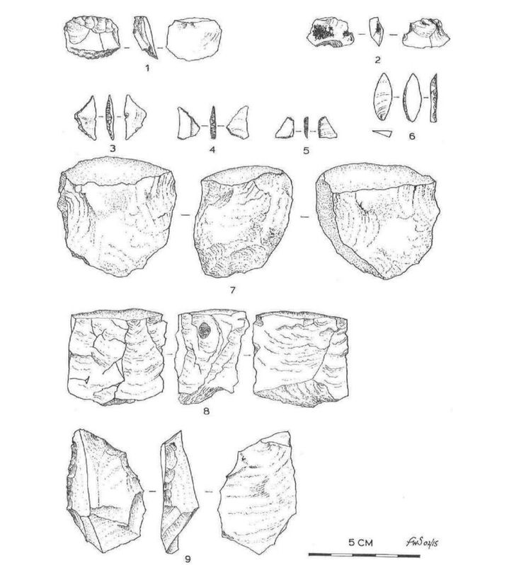 A drawing of representative rock tools discovered, showing the range and complexity of the paleo tech that humans used at Warratyi.
