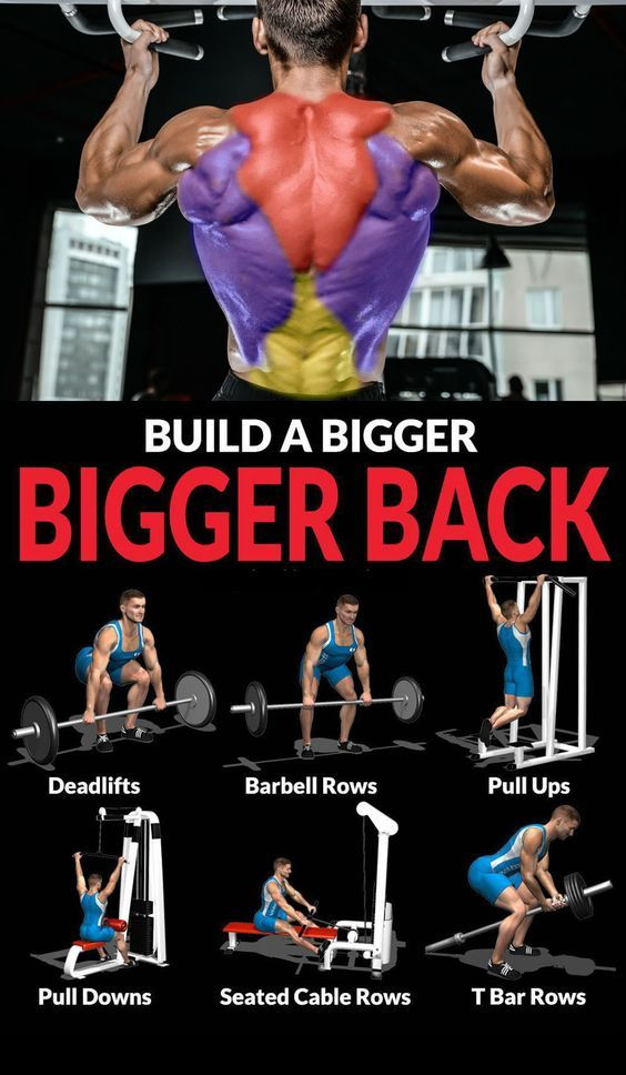 Top 10 The Best Muscle Building Back Exercises Compound Exercises