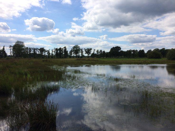 Empese en Tondense Heide Natuurmonumenten