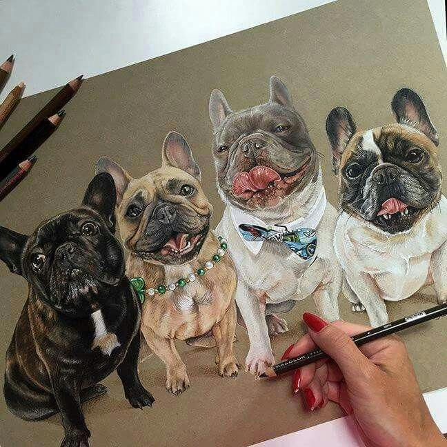 Awesome French Bulldog Illustration Frenchbulldogszeichnung Frenchbulldogsfunny