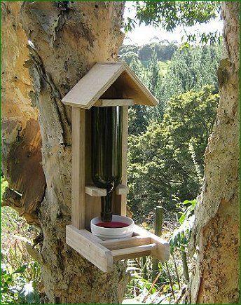 Bird House Plans Nz on house plans id, house plans la, house plans uk, house plans european, house plans ireland, house plans mn, house plans cat, house plans fr, house plans lk, house plans india,
