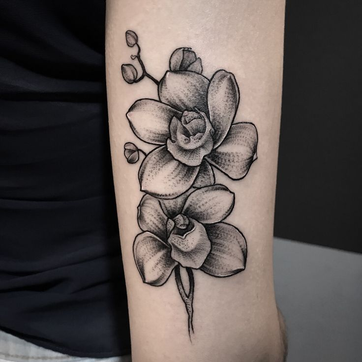 Architecture Orchid Flower Tattoos Orchid Tattoo Flower Tattoo Shoulder