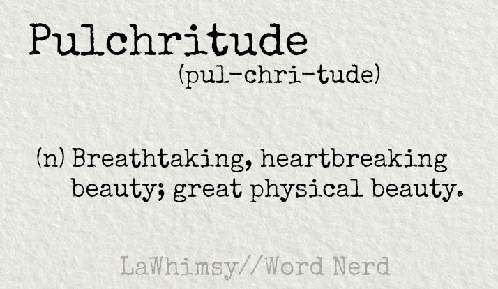 pulchritude definition Word Nerd via LaWhimsy