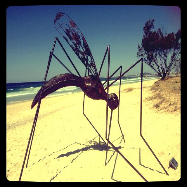 Sculpture Festival - Coolangatta QLD