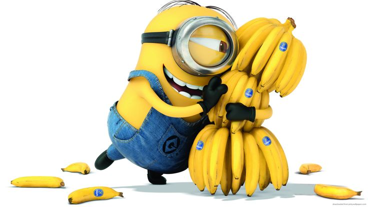 Banana might wipe out within a decade