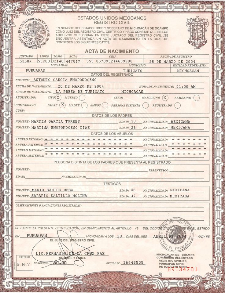 This Is Mexican Birth Certificate PSD (Photoshop) Template