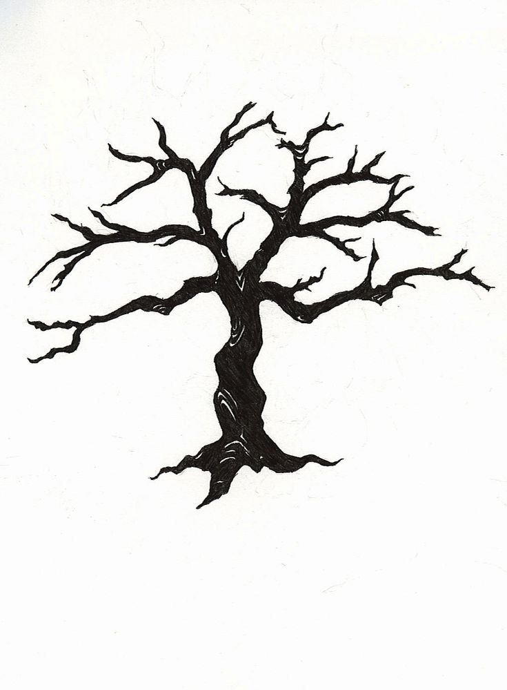 163 best bare trees images on pinterest tree of life for Best tree drawing
