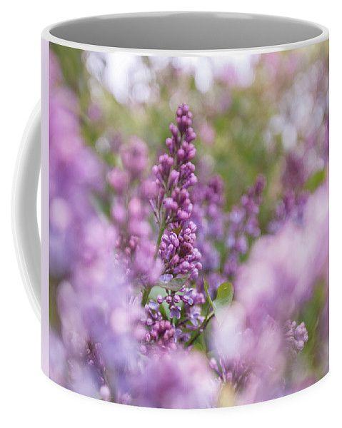 #AnnaMatveeva #Purple #Flowers #Lilac #CoffeMug #Mug #FineArtAmerica #ForSale #Artdecor #Decor #Homedecor #Nature http://anna-matveeva.pixels.com