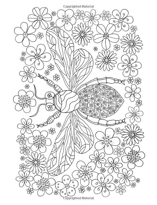 Flower Hunter Colouring Book De Ann Black Books