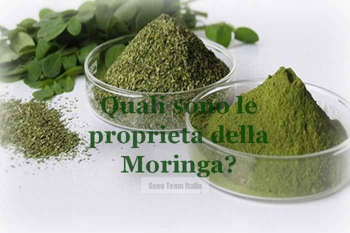 """Quali Sono Le Proprietà e I Benefici Della Moringa? Sapevi che la Moringa è riconosciuta a livello Internazionale come un """"Superfood"""" per il suo elevato moringa moringa proprietà"""