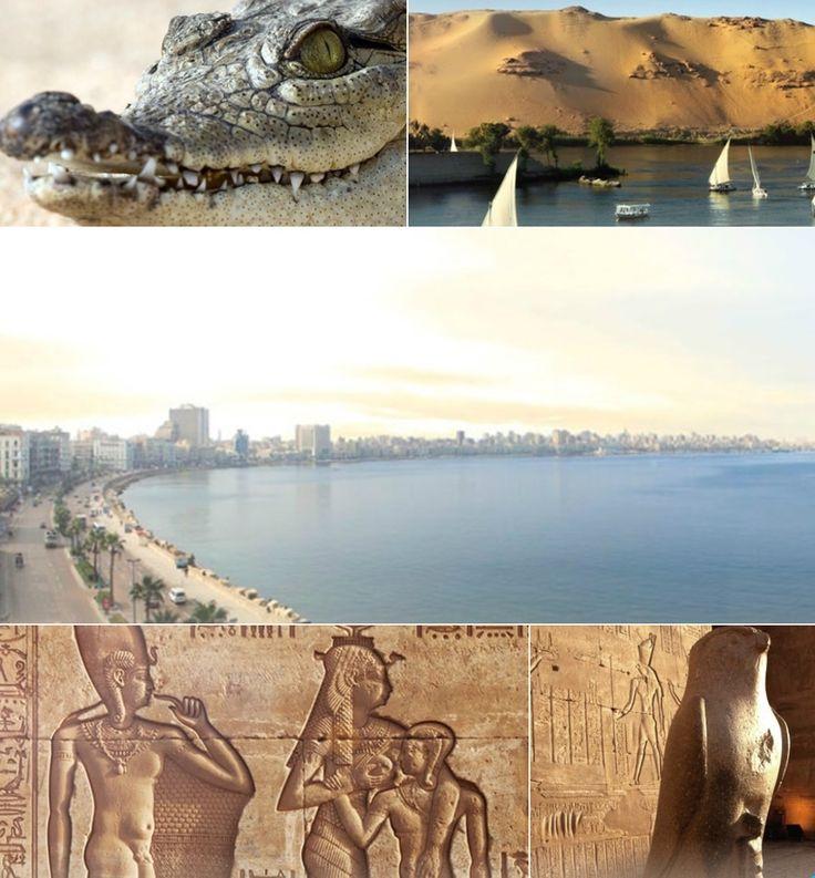 #TeachAbroad & Explore Egypt, Jobs, News, #TESOL Certification