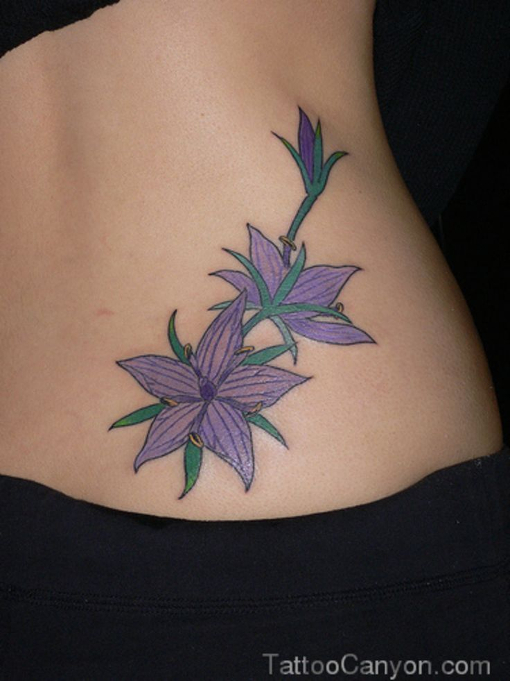 Jasmine Flowers Tattoo Picture #17884