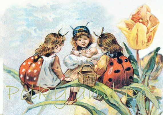 Vintage ladybug fairies: European Postcards, Trade Cards, Insects Costumes, Fairies Digital, Children Art, Vintage Ladybugs, Vintage Art, Ladybugs Fairies, Ladies Bugs