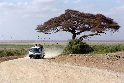 Vizesiz Afrika Ülkelerini Keşfedin!