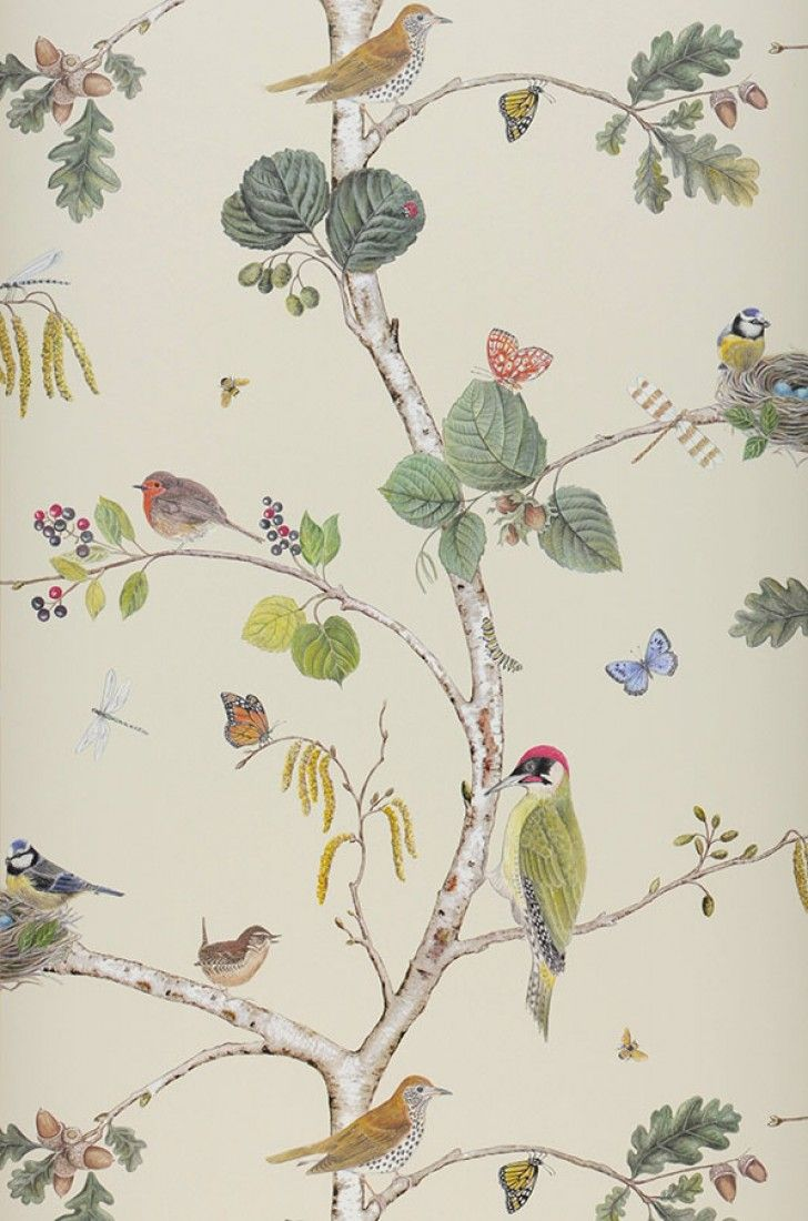 17 meilleures id es propos de papier peint oiseaux sur pinterest oiseaux - Papier peint oiseaux ...