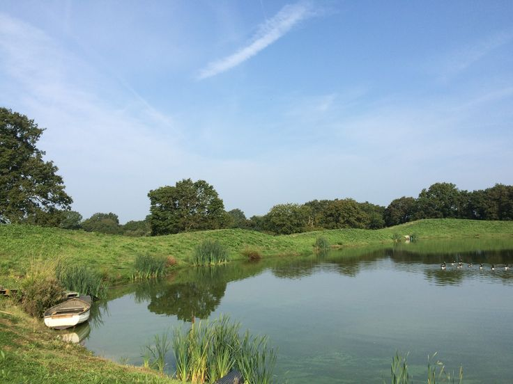 The lake at the new Architectural Plants Nursery just outside Pulborough
