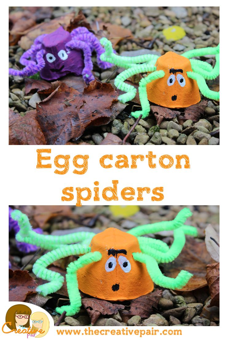 How to make an egg carton spider - kids crafts — The creative pair